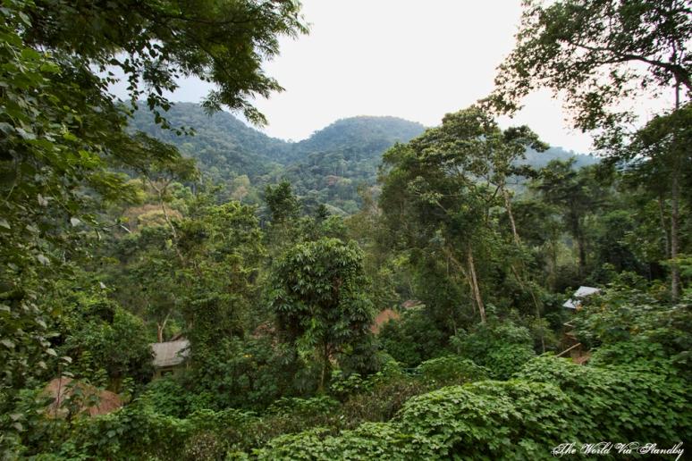 Bwindi, Uganda, Worldviastandby, Buhoma
