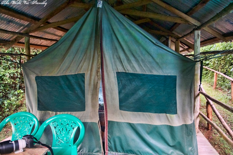 Bwindi Buhoma Community